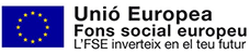 UE Fons social europeu