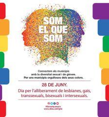 Dia per l'alliberament de lesbianes, gais, transsexuals, bisexuals i intersexuals