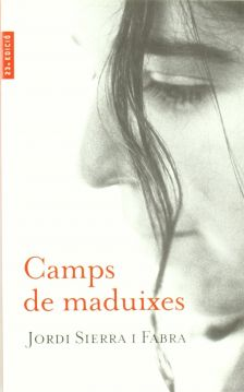 Camps de maduixes