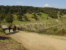 Parc de Can Cuiàs